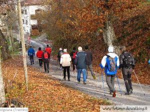 Nordic-Walking-Vattaro (5).jpg