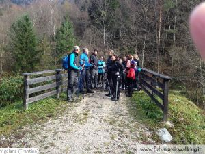 NordicWalking-Vigolana1 (9).jpg