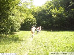 Nordic Walking Paderno del Grappa 15.jpg