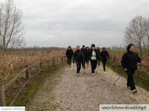 Nordic Walking Quarto Altino (18).jpg