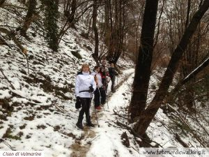 NordicWalking-Cison-Devescovi (12).jpg