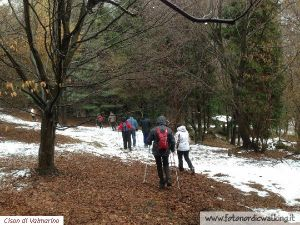 NordicWalking-Cison-Devescovi (13).jpg
