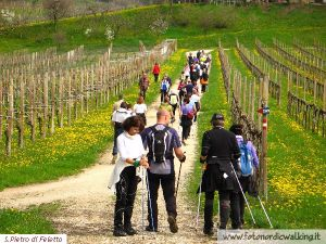 Nordic Walking S.PietroFeletto (17).jpg