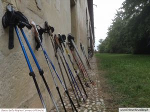 c26-Nordic Walking Altivole (5).jpg