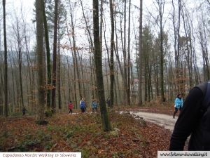 capodanno-nordic-walking-in-slovenia (31).jpg