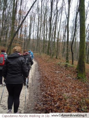capodanno-nordic-walking-in-slovenia (32).jpg
