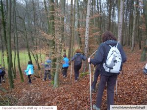 capodanno-nordic-walking-in-slovenia (39).jpg