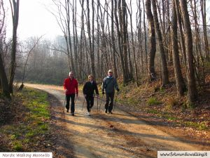 nordic-walking-montello (3).jpg
