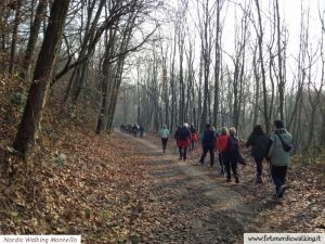 nordic_walking_montello (5).jpg