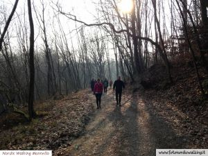 nordic_walking_montello (6).jpg