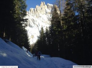 nordic-walking-san-martino-di-castrozza (1).jpg