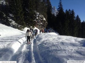 nordic-walking-san-martino-di-castrozza (24).jpg