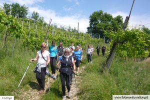 Nordic-Walking-SanGallo (6).jpg