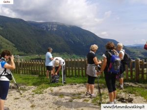 nordic-walking-gallio (20).jpg