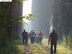 nordic-walking-castello-godego (12).jpg