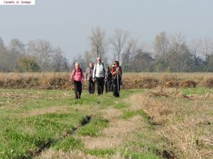 nordic-walking-castello-godego (16).jpg
