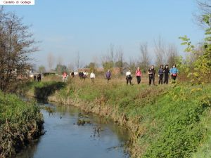 nordic-walking-castello-godego (19).jpg