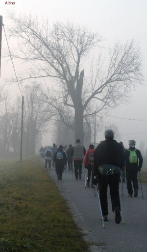 nordic-walking-altino (2).jpg