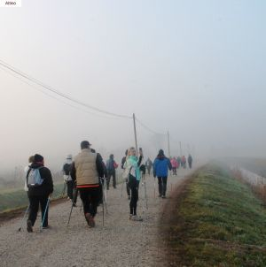 nordic-walking-altino (3).jpg