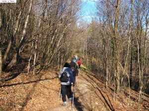 nordic_walking_tarzo (8).jpg