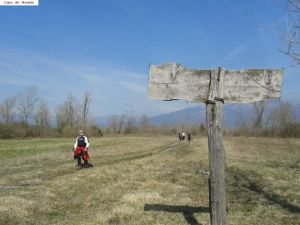 nordic_walking_montello (14).jpg