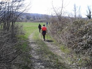 nordic_walking_montello (21).jpg