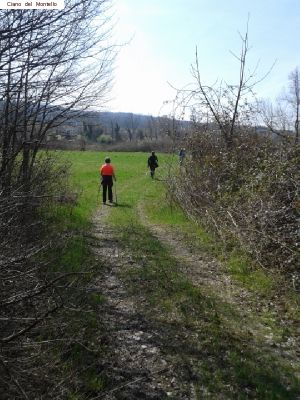 nordic_walking_montello (22).jpg