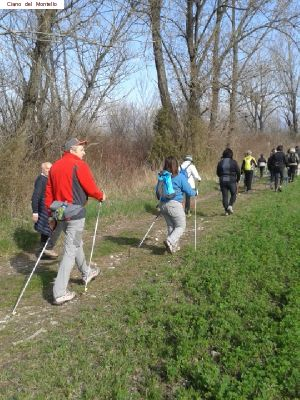 nordic_walking_montello (7).jpg