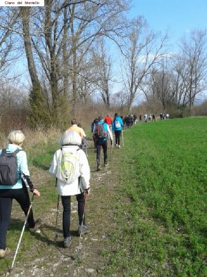 nordic_walking_montello (8).jpg