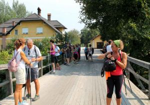 nordic-walking-slovenia011.jpg