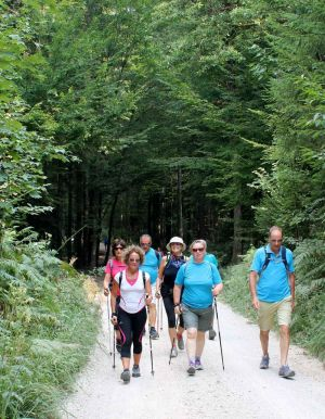 nordic-walking-slovenia033.jpg