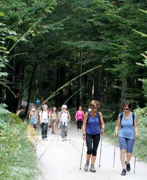 nordic-walking-slovenia034.jpg