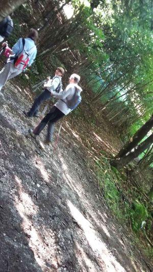 nordic-walking-nevegal005-c89.jpg