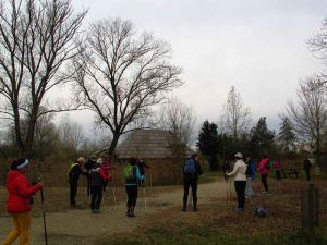 nordic-walking-brussa003.jpg