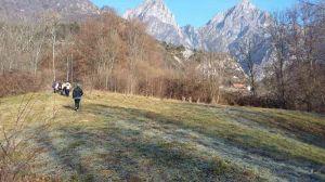 nordic-walking-andreis010.jpg